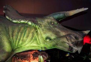 Armitage-article-triceratops-dinosaur-768x524